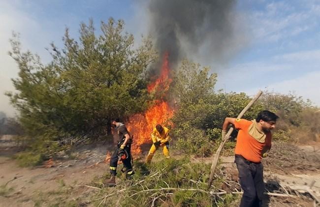 وقوع آتش سوزی در لبنان به دنبال افزایش دمای هوا
