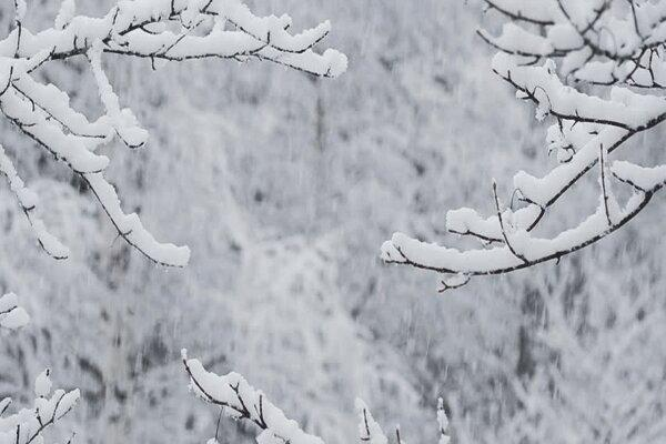 هواشناسی مازندران نسبت به کاهش دمای هوا اخطار داد ، برف در ارتفاعات