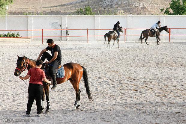 برگزاری هفتمین دوره مسابقات کشوری استقامت در قطب سوارکاری ایران