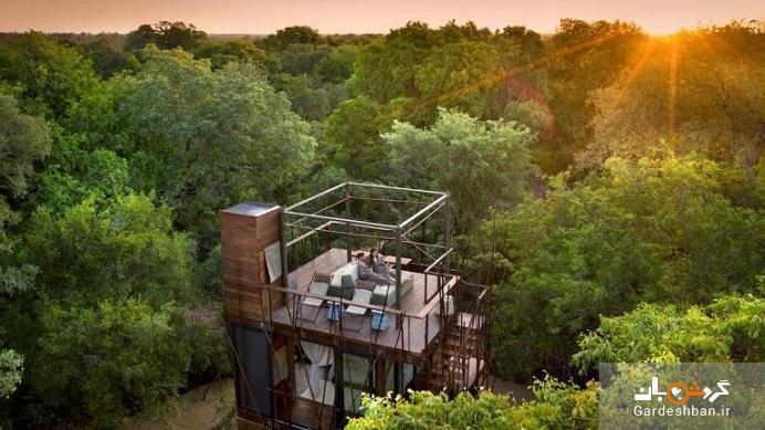 خانه درختی انگالا؛ در دل جنگل های آفریقا در زیر ستاره ها بخوابید