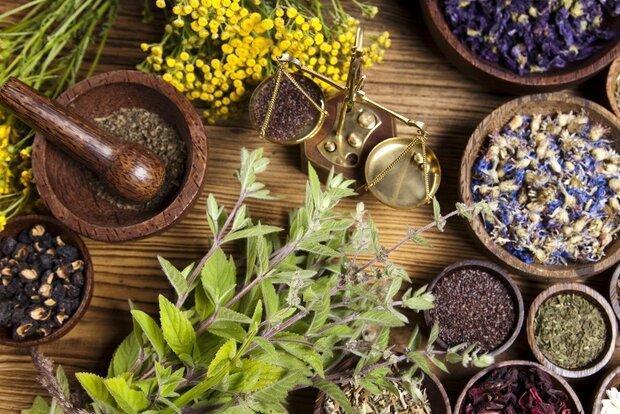 توصیه های تغذیه ای تقویت ایمنی بدن از دیدگاه طب سنتی