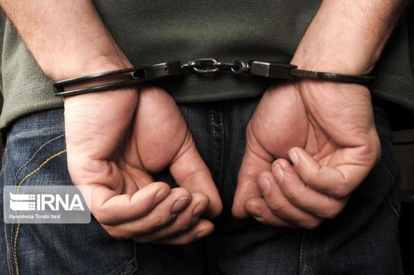 خبرنگاران سارق سابقه دار در بروجرد دستگیر شد