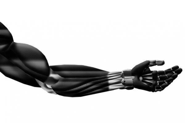 ابداع ماهیچه مصنوعی که با ورزش قدرتمندتر می گردد