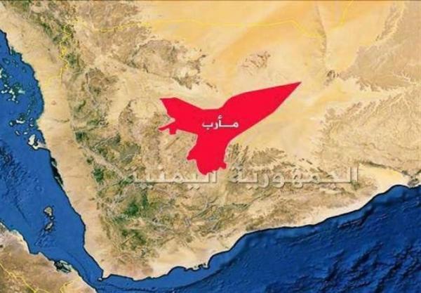 نبرد سنگین در جبهه مأرب و ضرب الاجل 48ساعته قبایل حضرمی
