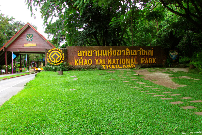 پارک ملی کاو یای تایلند